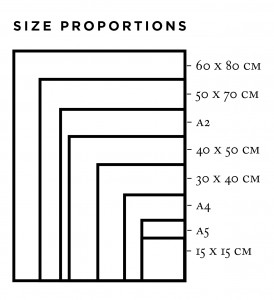 size proportions
