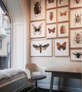 Photo - Liljebergs showroom in Stockholm