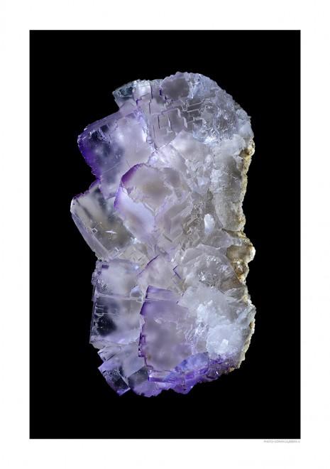 Fluorit lila A4 svart liggande webb