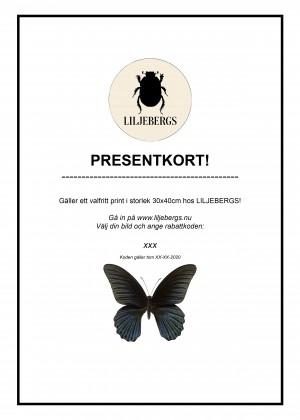 Presentkort 3040