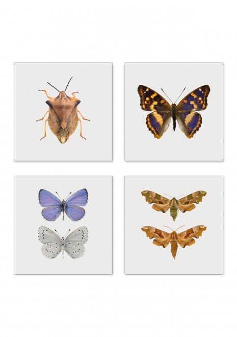 Miniprints 4-pack