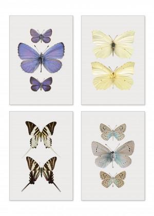 Miniprints 4-pack A5